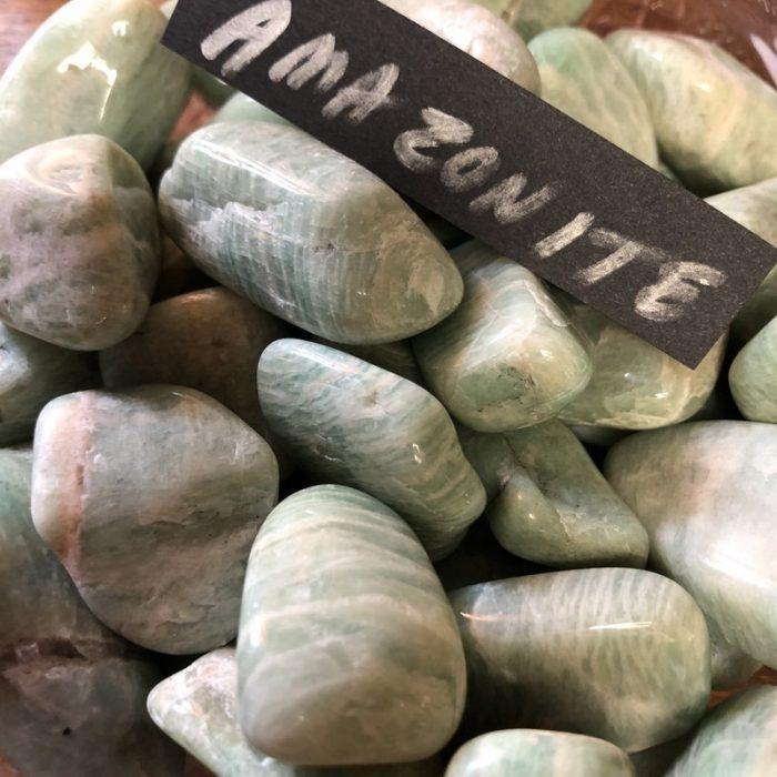 ammonite tumbled stone
