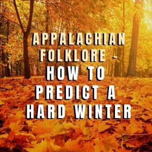 Appalachian Folklore – How to Predict a Hard Winter in the South